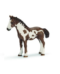 (SC13695) Schleich, Pinto Yearling